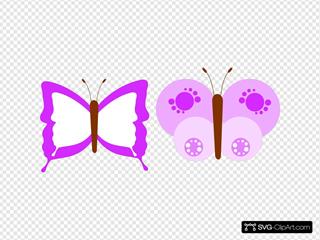 Buttefly