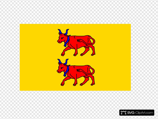 Flag Of Bearn