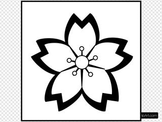 Sakurawhite