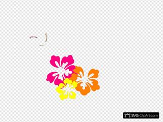 Hibiscus 22