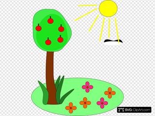 Sun Tree Flowers