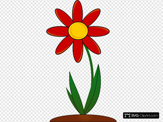 Planted Red Flower
