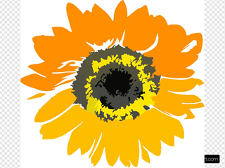 Sunflower Flower Clipart