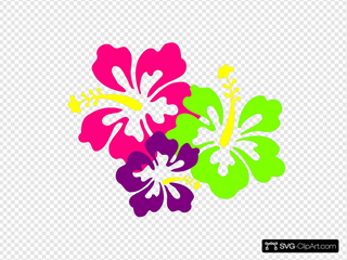 Hibiscus Clipart Shoeflower - Red Hibiscus Flower Png, Transparent Png -  640x480(#3248505) - PngFind