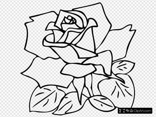Outline Rose