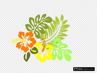 Multi Hibiscus1