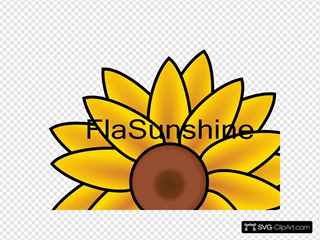 Flasunshine