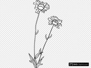 Wild Flower SVG Clipart