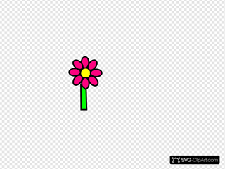 Pink Flower With Stem