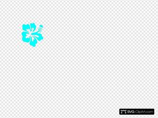 Hibiscus Flower Blue
