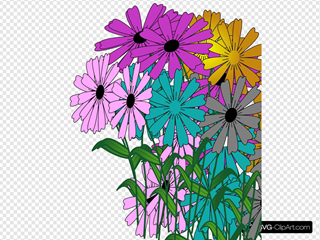 Hope Flowers Blooms