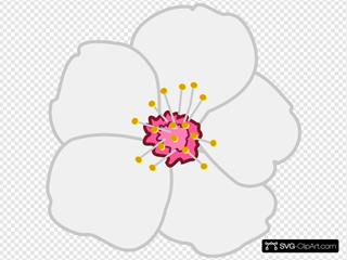 Almond Flower SVG Clipart