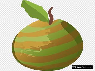 Guava Striped