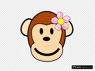 Girl Monkey
