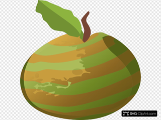 Guava Striped