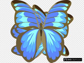 Swoonerfly