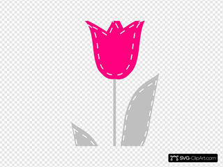 Long Pink And Gray Tulip