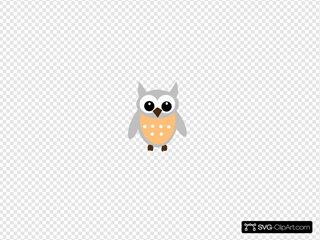 Light Orange Gray Owl