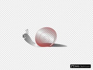 Snail 18