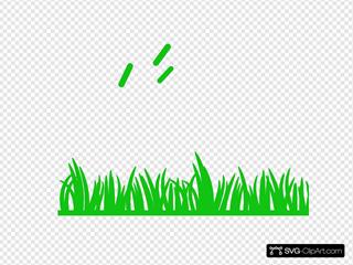 Green Grass Flat End