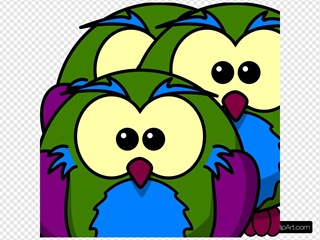 Multicolour Owl
