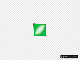 Nlyl Green Rectangle