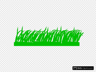 Grass Solid