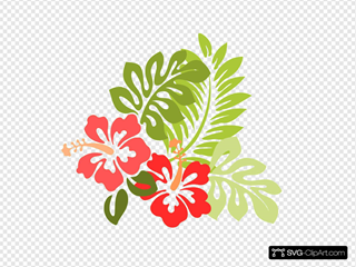 Hibiscus By Ib