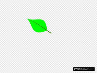 Cryptpoint Leaf 02