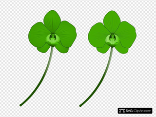Green Orchid SVG Clipart