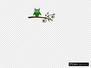 Green Owl On Branch