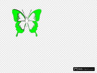 Blue Butterfly22