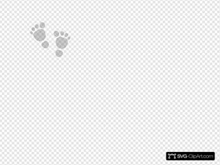 Baby Foot Grey