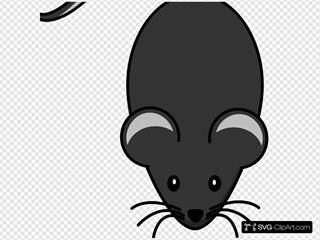 Dark Grey Mouse