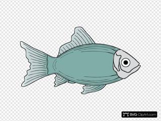 Generic Fish