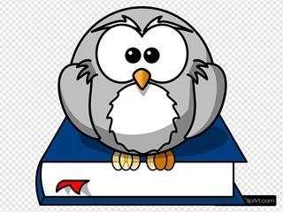Owl Smaller Eyebrow