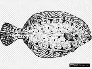 Flounder SVG Clipart