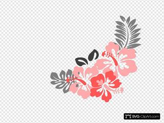 Hibiscus Coral Grey