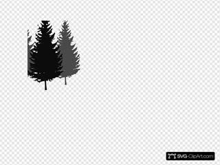 3pinetrees3