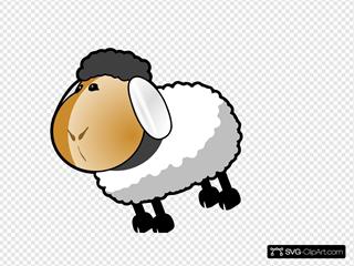 Sheep Dark Grey Hair