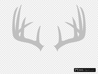 Grey Antler Image Clipart