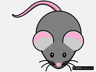 Pink And Grey Mouse
