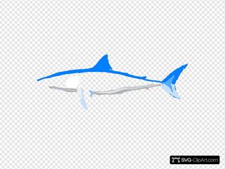 Shark No Words
