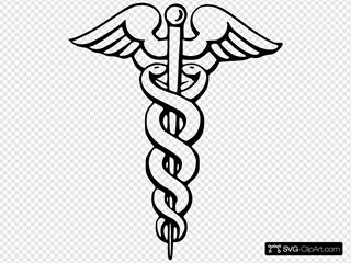 Pharmaceutical Snake Pin Wings