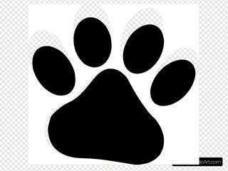 Black Pet Paw / Ed Sheeran Orange Text