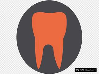 Orange Tooth3