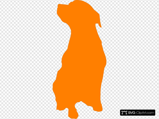 Orange Rott