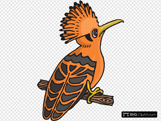 Orange Cartoon Hoopoe