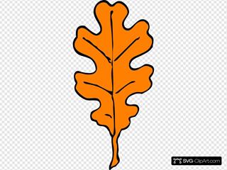 Orange Oak Leaf