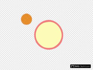Pinkorangeborder Tangerine